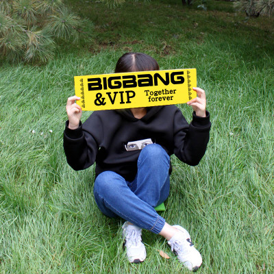 Banner Paper BIGBANG VIP