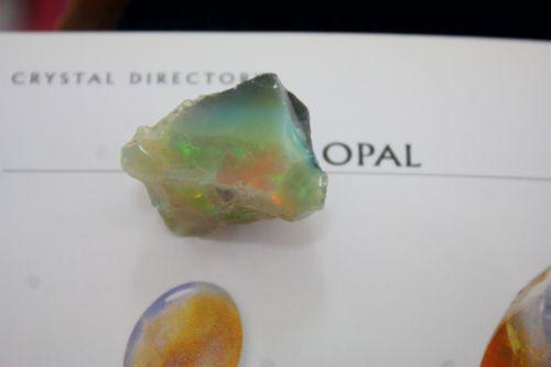 โอปอล (OPAL)