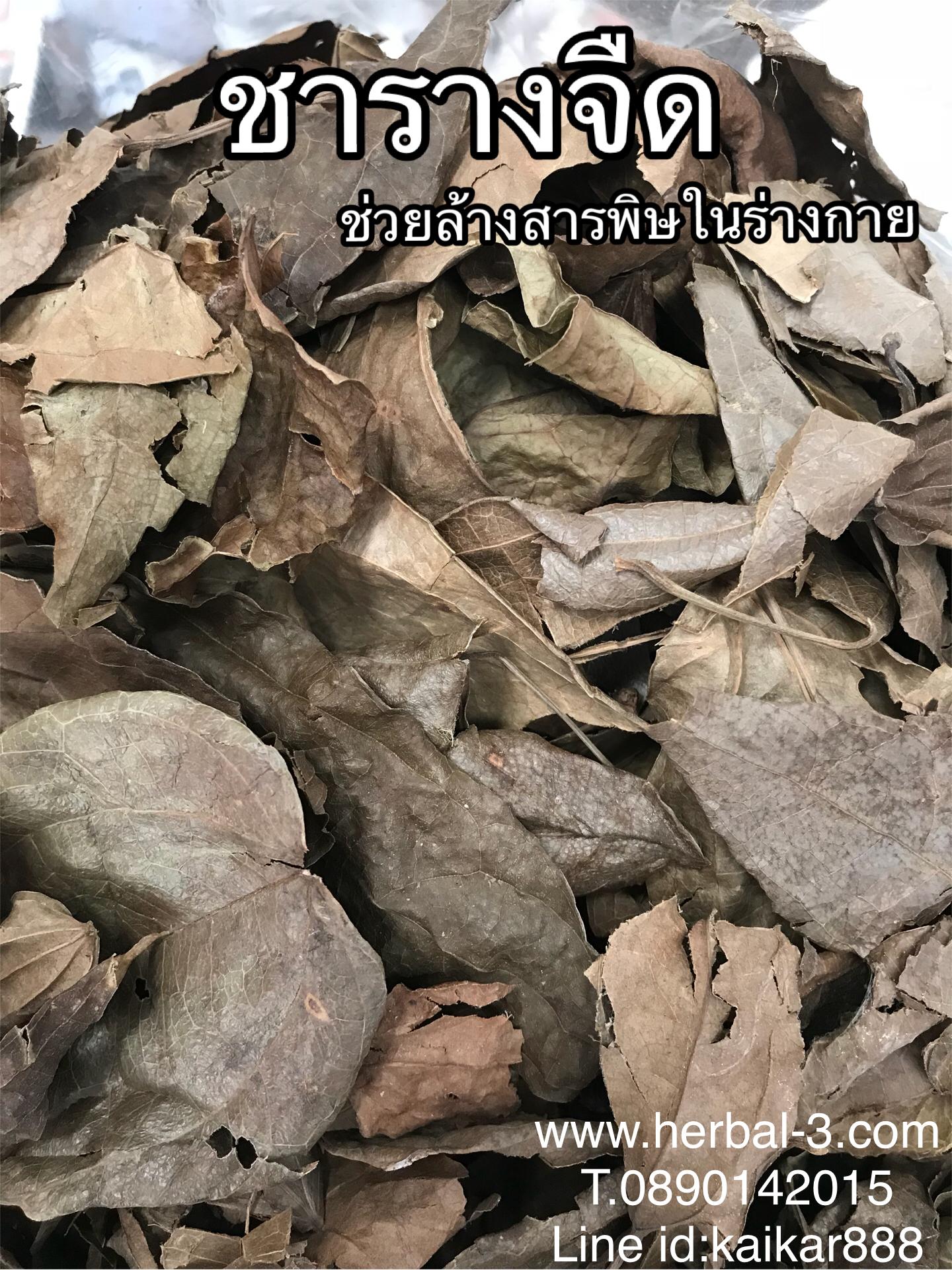 ชารางจืด (ใบอบแห้ง กิโล)