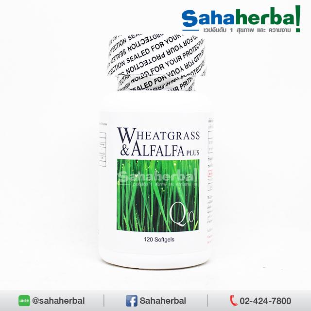 ผักเม็ด นูไลฟ์ Wheatgrass Alfalfa SALE 60-80% ฟรีของแถมทุกรายการ