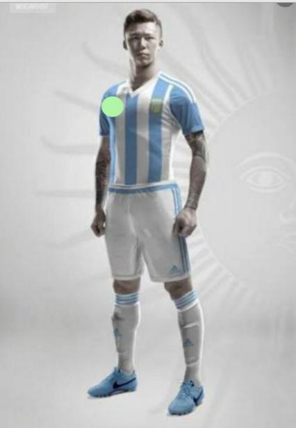 ชุดฟุตบอลโลกทีมชาติอาเจนตินา 2014 เหย้า