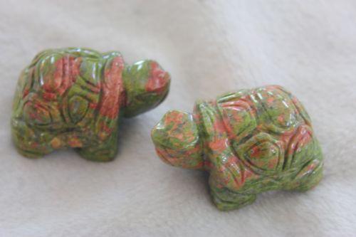 เต่ายูนาไคต์