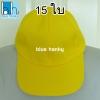 15ใบ สีเหลือง ฟรีไซส์ ราคาถูก หมวกกีฬาสี
