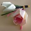 ดอกกุหลาบตูม