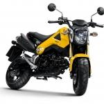 ชุดสี MSX125 (2013) แท้ศูนย์ฮอนด้า สีเหลือง พร้อมสติ๊กเกอร์ * สนใจราคาติดต่อ Line :@TBBLine *
