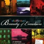 แต้มสีที่อารมณ์ Beauty Of Emotion By Impression บรรเลง โดย พงษ์ธ์ จันทร์เนตร์