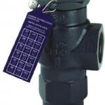 Safety Valve / Pressure Relief Valves