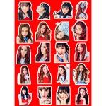 สติ๊กเกอร์พีวีซีเซต Red Velvet Rookie