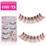 HW-19# ขนตาเอ็นใส สีน้ำตาล (ราคาส่งนี้ ขั้นต่ำ 15 กล่องขึ้นไปเท่านั้น) คละเเบบได้