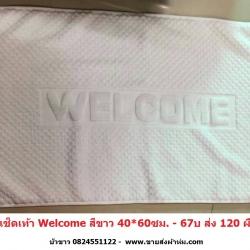 ผ้าเช็ดเท้า Welcome 40*60ซม (งานจีน) ผืนละ 60บ ส่ง 120ผืน - มี สีขาว/ น้ำตาล/ น้ำเงิน/ชมพู