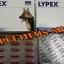 LYPEX เสริมการย่อยอาหาร thumbnail 2
