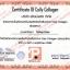 Colly Collagen คอลลี่ คอลลาเจน 10,000 mg 15 ซอง SALE 60-80% ฟรีของแถมทุกรายการ thumbnail 2