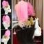 MAI26 มงกุฎขนนก ผี้เสื้อทองโบว์ (งาน handmade)**สินค้ามีจำกัด** thumbnail 1
