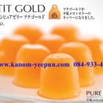 Hori Pure Jelly PETIT GOLD 12 ถ้วย