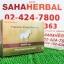 High Care Premium Sheep Placenta 60000 Plus Hyalunic Acid โปร 1 ฟรี 1 SALE 69-80% thumbnail 1