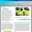 DR Absolute Collagen แอปโซลูด คอลลาเจน โปร 1 ฟรี 1 SALE 69-80% thumbnail 7
