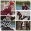 Shirte MEGATON RED Sty.GOT7 -ระบุไซต์/สี- thumbnail 8